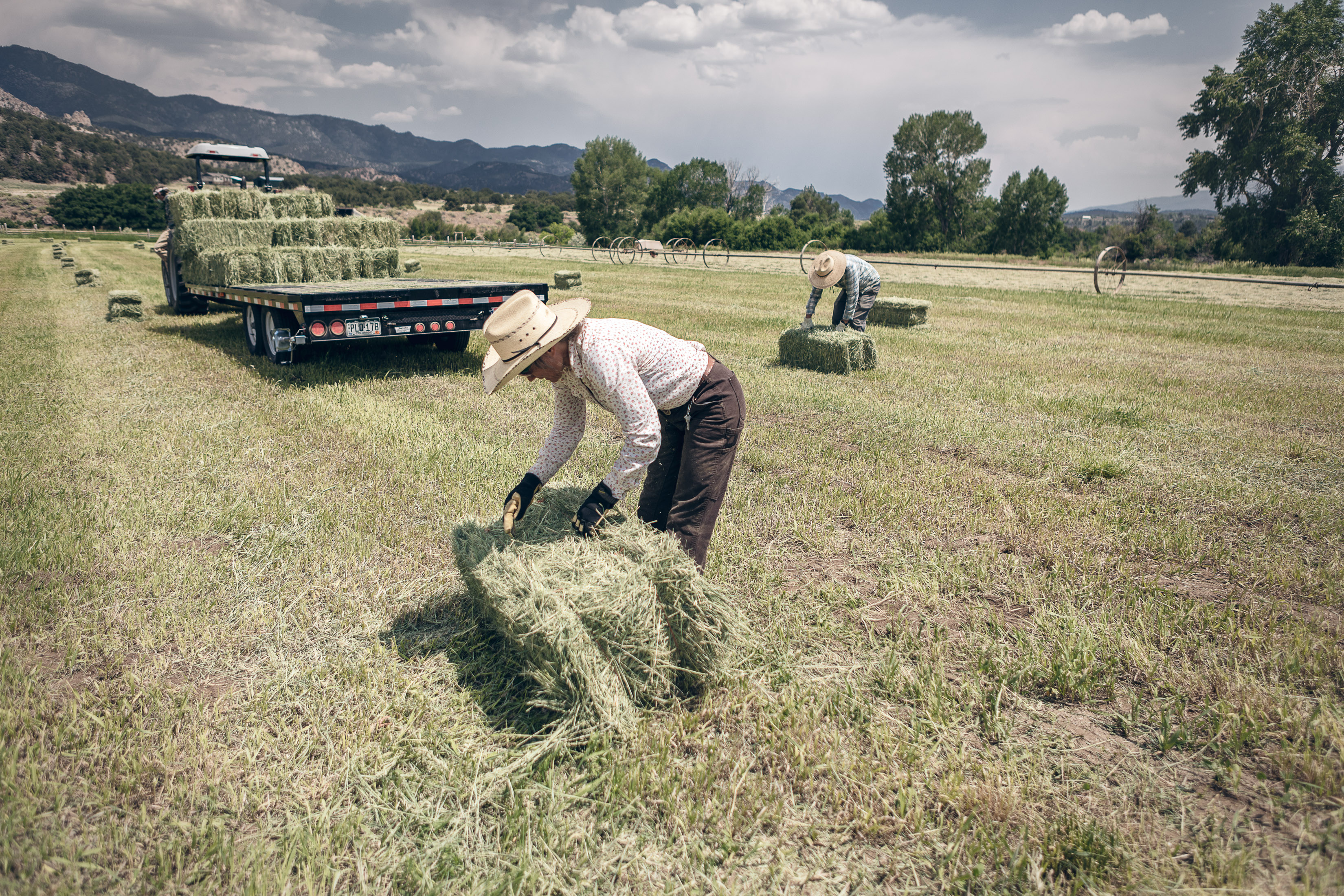 Two people lift bails of hay on a hay farm in Howard, Colorado