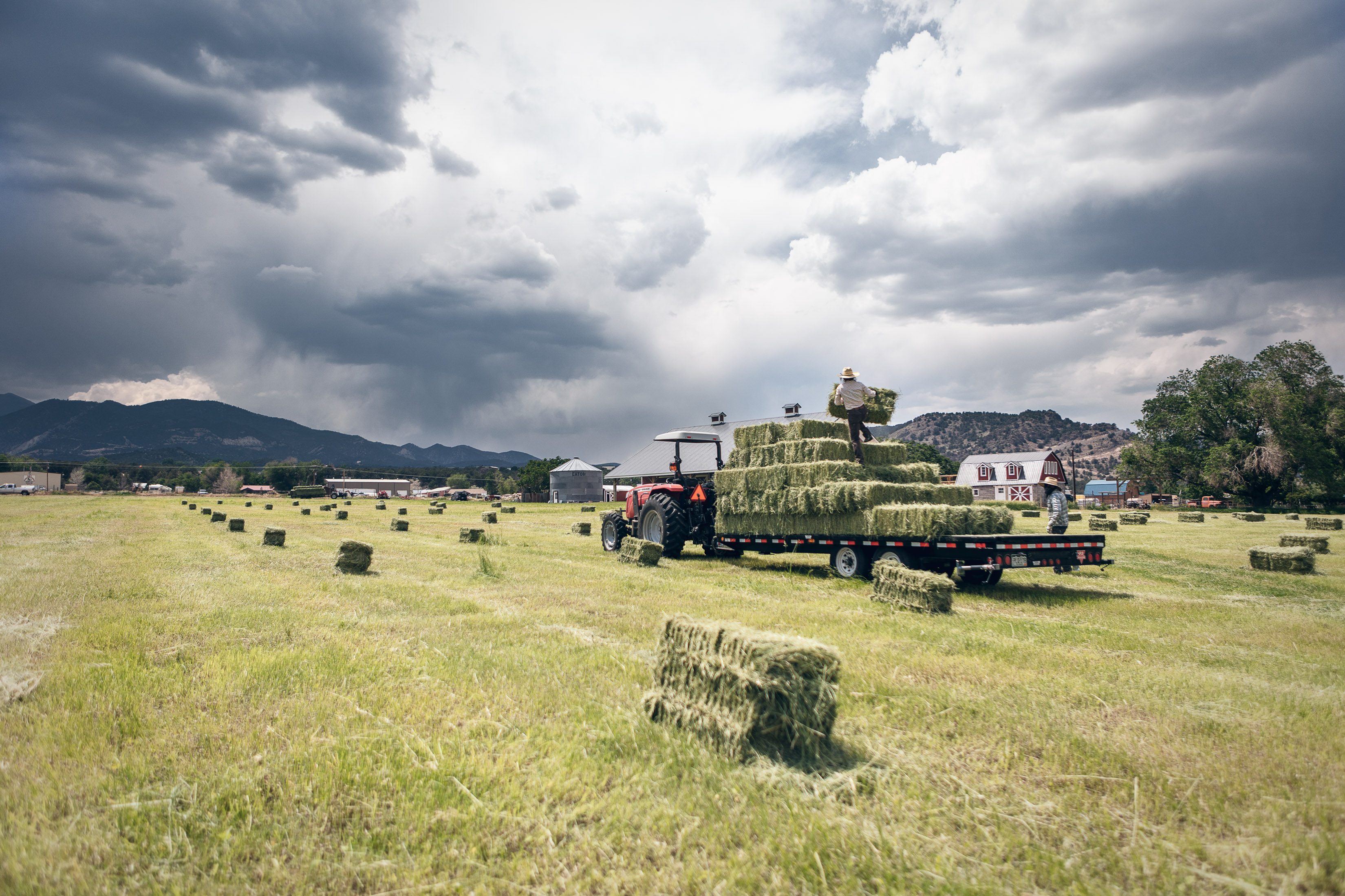 A woman stacks a bail of hay on a trailer on a hay farm in Howard, Colorado