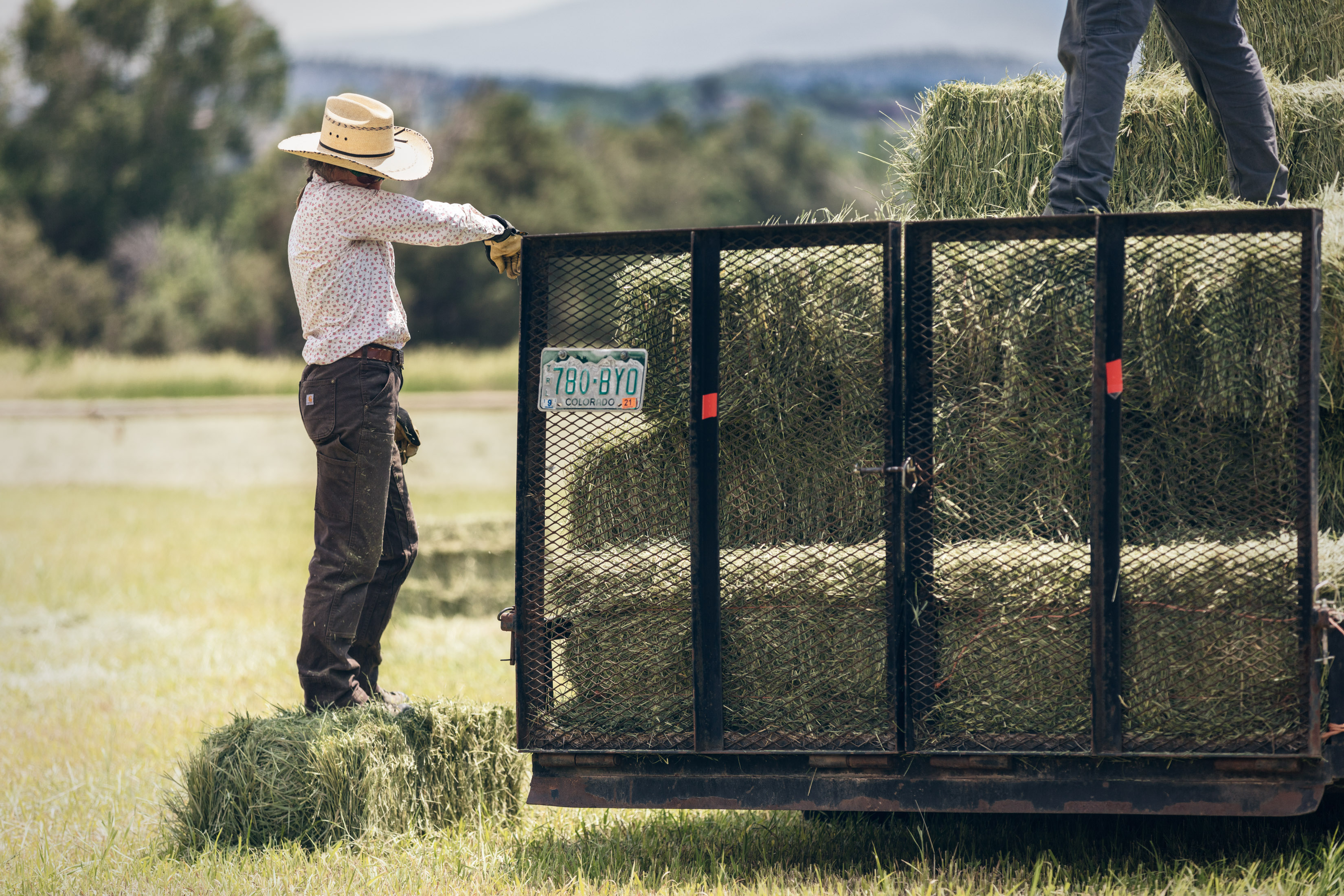 a woman wipes sweat from her brow while bailing hay in hay farm in Howard, Colorado